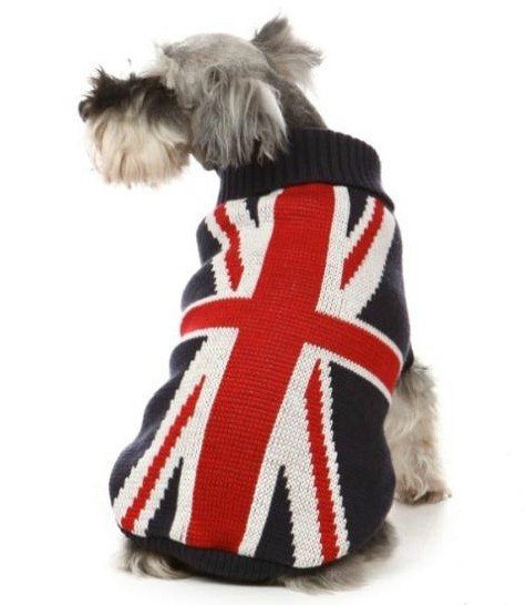 Pet accessories dog apparel british flat pattern sweater fashionable hot pet dog clothes